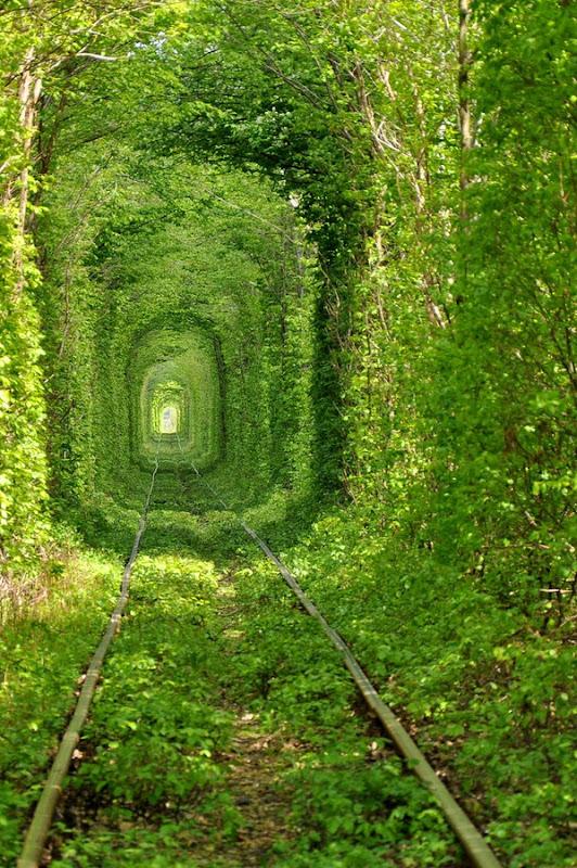 صور من نفق الحب tunnel-of-love-1[3